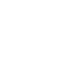 The Bridge Experience